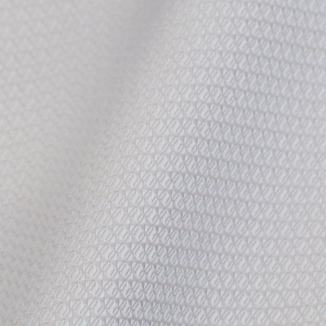 ドビー | 小さい織り柄