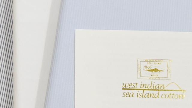 海島綿 | シーアイランドコットン